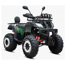 Benzininis keturratis GTM G11/10 PRO 250cc